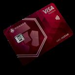 monaco ruby steel card logo
